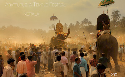Elephant Festival in Kerala, India. Photo via Flickr:Sreeram Nambiar