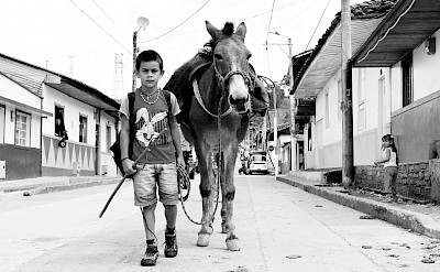 Boy and his donkey off to work in Salento, Quindío, Colombia. Photo via Flickr:Maria Grazia Montagnari