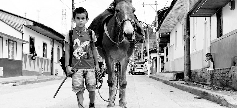 Boy and his donkey off to work in Salento, Quindío, Colombia. Photo via Flickr:Maria Grazia Montagnari