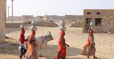 Working women in Rajasthan, India. Flickr:Ijya Yakubovich