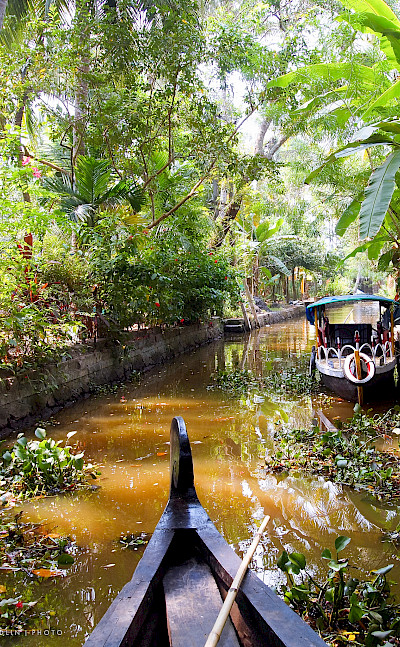 Backwaters Canal in Kerala, India. Photo via Flickr:Julia Maudlin