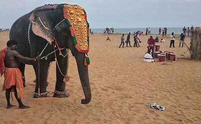 Elephant on beach in Kerala, India. Flickr:Thejas Panarkandy