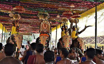 Kerala Holi Elephants Festival. Flickr:Abhiman Singh