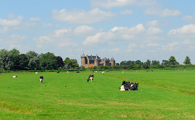 Muiderslot sits among pastures in Muiden, North Holland, the Netherlands. Photo via Flickr:martin_vmorris