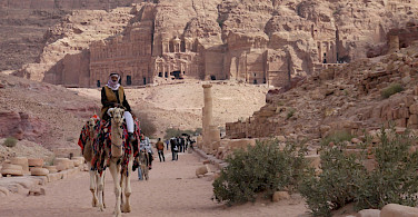 Camels in Petra, Jordan. Photo via Flickr:krebsmaus07