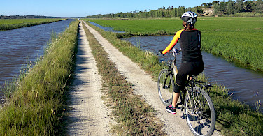 Quiet bike paths on the Vicentine Coast & Algarve Bike Tour in Portugal.