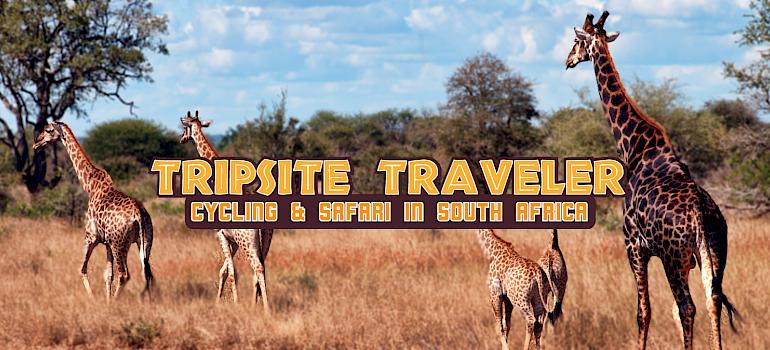 Tripsite Traveler: Cycling & Safari in South Africa