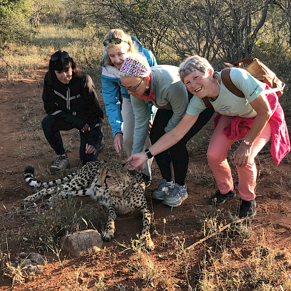 Picture with a cheetah