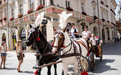 Horsedrawn carriage rides in Old Town, Krakow, Poland. Photo via Flickr:Davis Staedtler