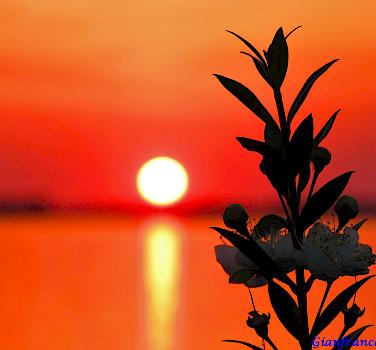 Sunset over Orbetello on the Tuscan Coast, Italy. Photo via Flickr:Gianfranco Vitolo