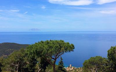 View of Campese Montecristo Island on the Tuscan Coast, Italy. Photo via TO