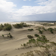 Sandy beaches of the Curonian Spit, Lithuania. Photo via Flickr:Kate Bum