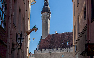 Town Hall and marketplace in Tallinn, Estonia. Flickr:Mike Beales