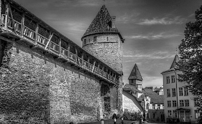 Fortified walls of Tallinn, Estonia. Flickr:Mike Beales