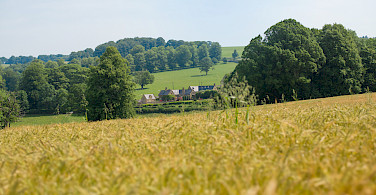 Cotswolds countryside.