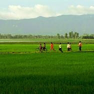 Biking through Chau Doc in Vietnam. Photo via Flickr:Huan Nguyen