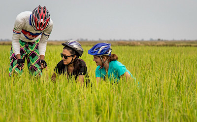 Angkor to Saigon Bike Tour. Photo via TO.