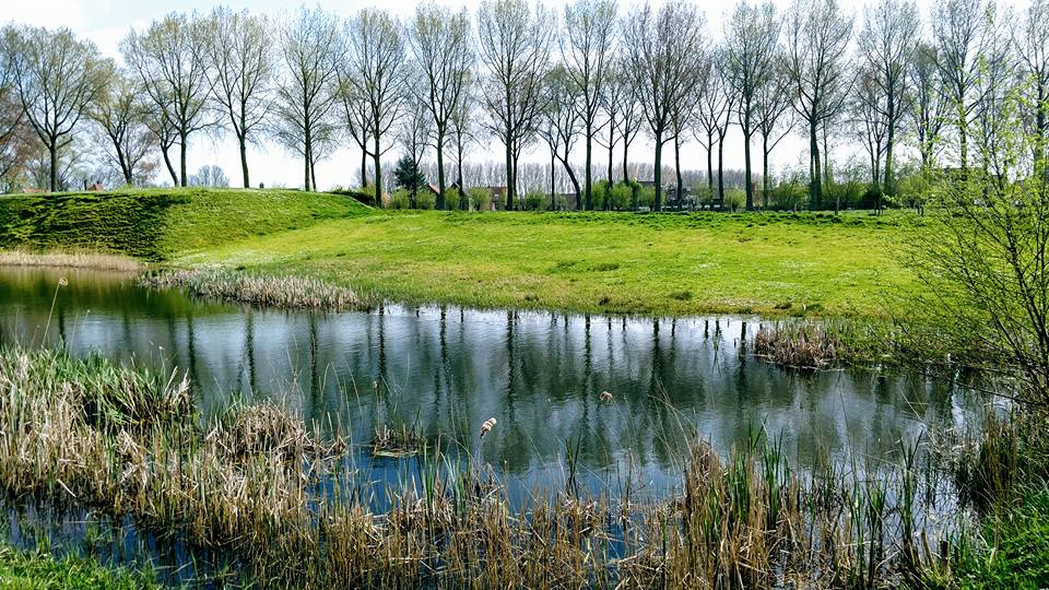 Pond on the way to Damme.