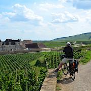 Borgonha de Bicicleta - Passeio Guiado Foto