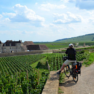 Admiring the view from the bicycle in Burgundy, France.