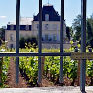 The Meursault white wine growing region in Burgundy. Flickr:Jon Oropeza