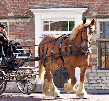 Carriage ride in Middelburg, Zeeland, the Netherlands. Flickr:Marian van der Weide