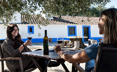 Many local wines to peruse on this bike tour in Portugal.