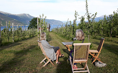 Bike rest at an Apple Orchard in Norway. Photo via TO.