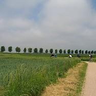 In the countryside surrounding Bruges, Belgium. Flickr:csbelgium