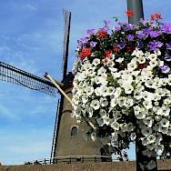 Windmill in Zierikzee, the Netherlands. Flickr:Roel vanDeursen