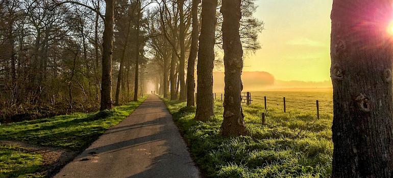 Rural Holland - Gelderland and De Hoge Veluwe Park