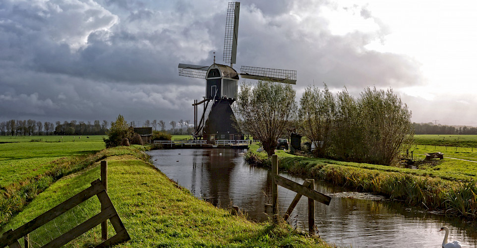 Windmill in the countryside of the Netherlands. © Hollandfotograaf