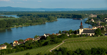 Boating the Rhine River to the vineyards of Nierstein, Germany. Flickr:Marco Verch