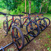 Ilhas de Galápagos de Bicicleta e Barco Foto
