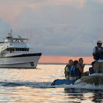 Beluga - Beluga passengers heading for land | Bike & Boat Tours