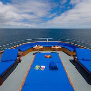 Beluga-sun deck