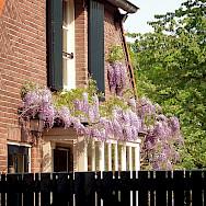 Typical Dutch architecture in Rhenen, Utrecht, the Netherlands. Flickr:E Dronkert