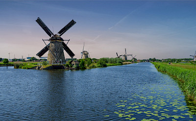 Kinderdijk has some 19 windmills! Flickr:Norbert Reimer