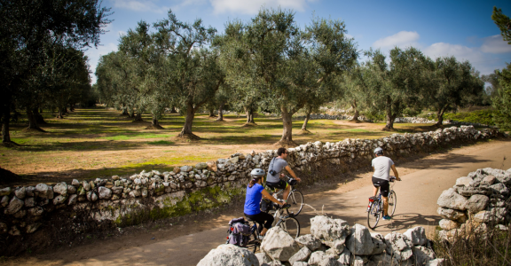 Biking the Puglia - Heel of Italy tour.