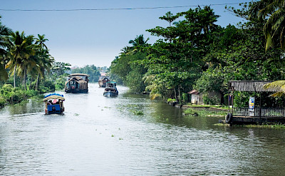 Cruising the backwaters of Alleppey in Kelala, India. Fickr:Reflected Serendipty