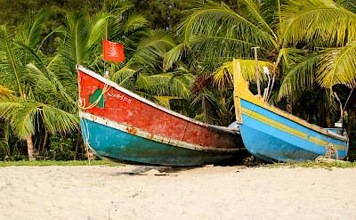 Boat rides at Marari Beach in Kerala, India. Flickr:Andy Kaye