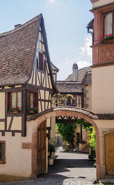 Biking through Alsace, France. Flickr:Valentin R.