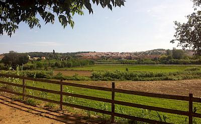 La Bisbal d'Empordà, Spain. CC:Toniher