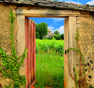 Open door to the vineyards in Burgundy, France. Flickr:MW Pics