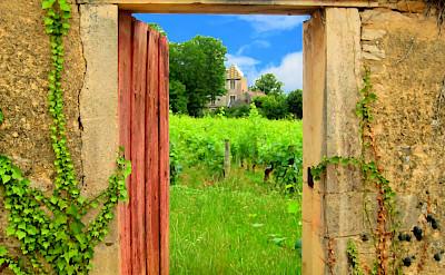 Open door to the vineyards in Burgundy, France. Flickr:MW Pics