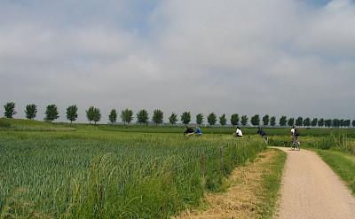Biking the quiet paths in West Flanders, Belgium. Flickr:CSBelgium