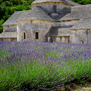 Vast country estates among the lavender fields in Provence region of France. Photo via TO
