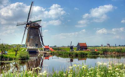 Windmills aplenty to see in Kinderdijk, the Netherlands. Flickr:John Morgan