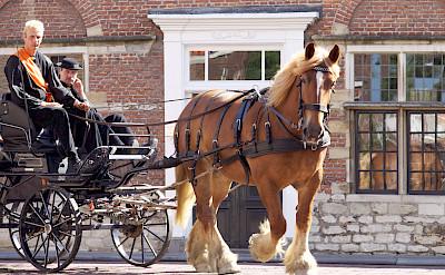 Horse-drawn carriage in Middelburg, province Zeeland, the Netherlands. Flickr:Marian van der Weide