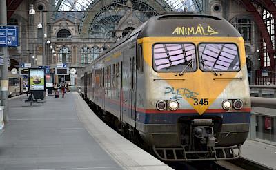 Train station in Antwerp, Belgium. Flickr:Louise Speret
